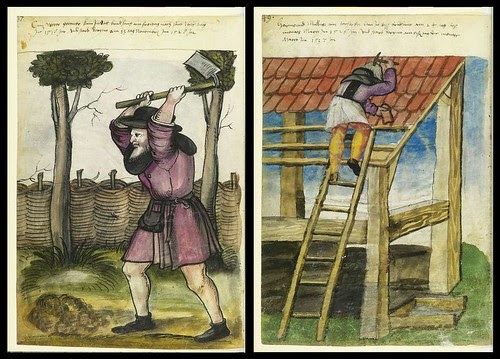Gardener and Roof Repairer