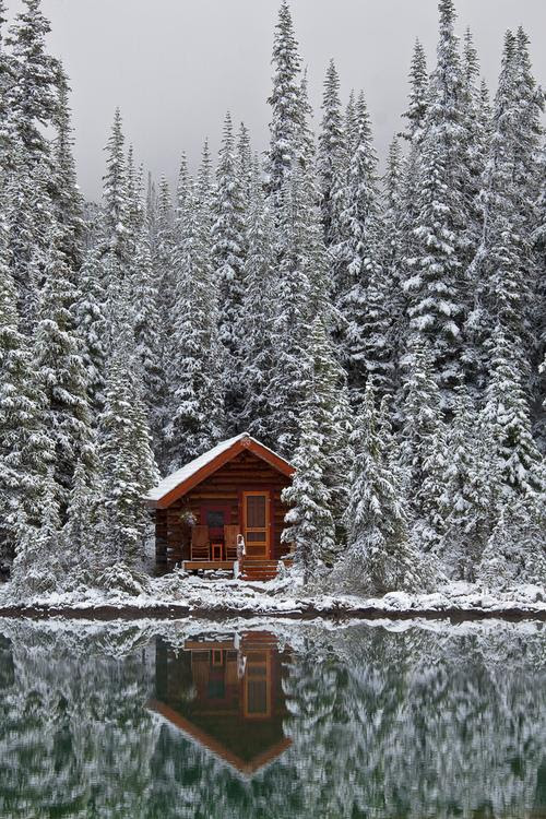 Cabin In The Woods Funny Pictures Quotes Pics Photos Images