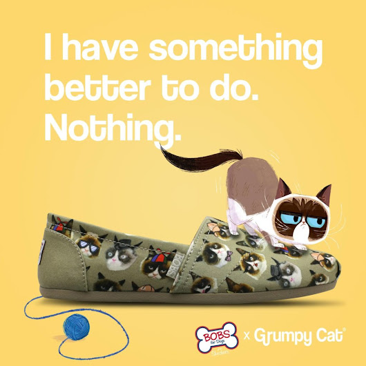 Grumpy Cat and Sketchers Shoes Team Up for Animal Rescue - PetsWeekly.com
