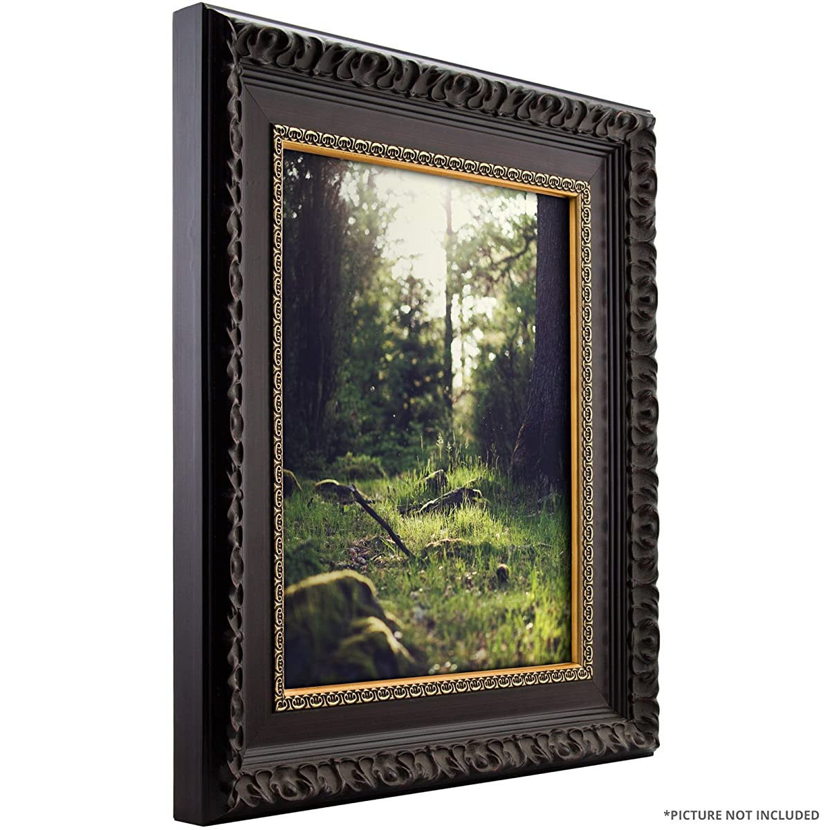 Craig Frames 9530 20 By 30 Inch Picture Frame Ornate Brushed Finish