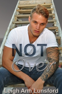not over cover ebook