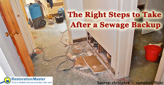 The Right Steps to Take After a Sewage Backup