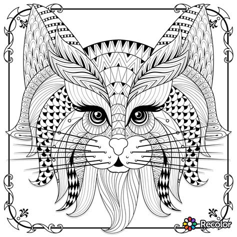 cute cat zentangle  colour coloring dog coloring page