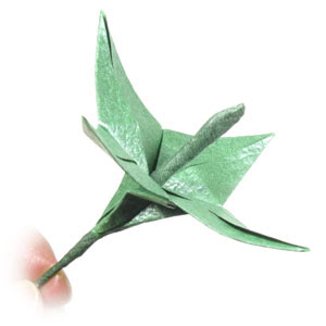 Origami Flower - Lily - YouTube | 300x300