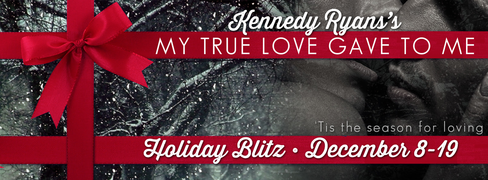 my true love gave to me banner