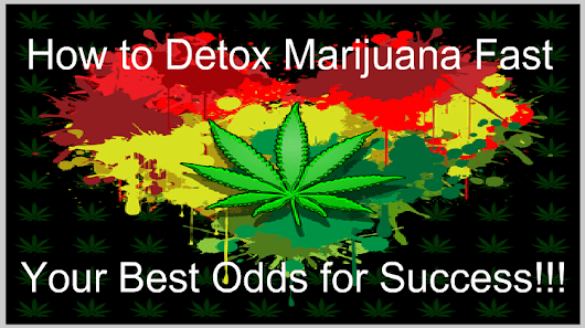 How to Detox Marijuana Fast - Your Best Odds for Success! (Updated)