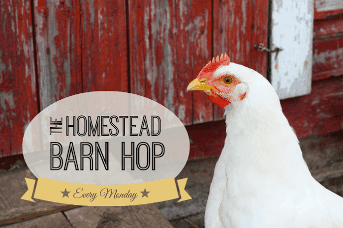 Homestead Barn Hop