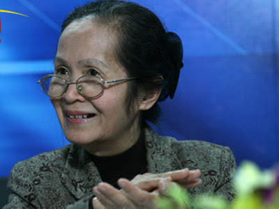Phạm Chi Lan, kinh tế, cổ phần hóa