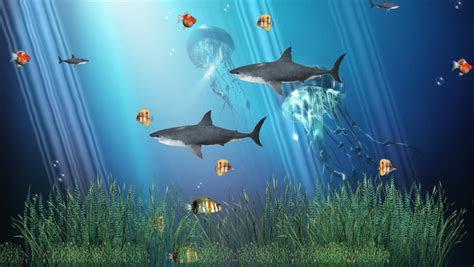 screenshot review downloads  freeware coral reef aquarium animated wallpaper