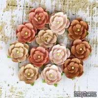 Набор цветов Prima - Avante - Cedar - ScrapUA.com