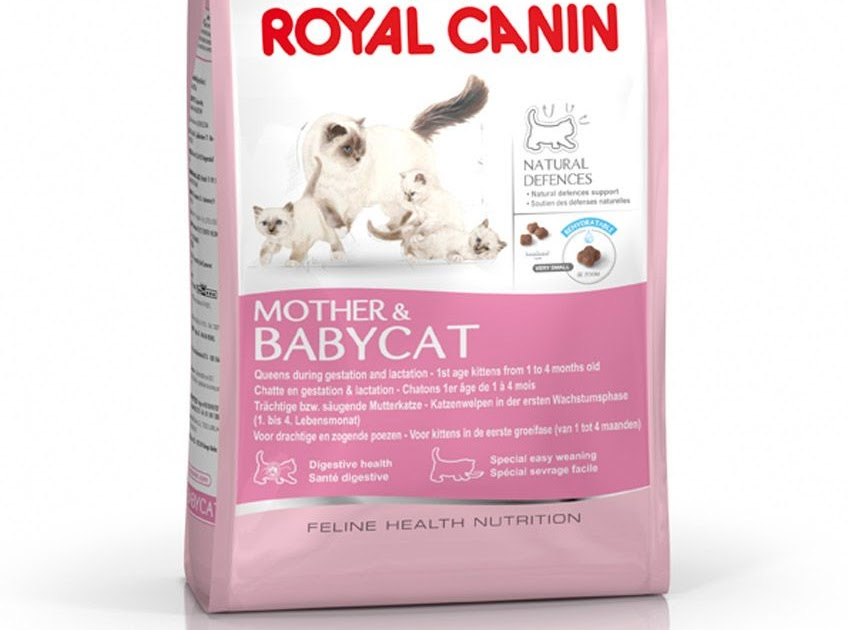 Happy Cat House Bandung Royal Canin Mother Amp Baby 500 Gr