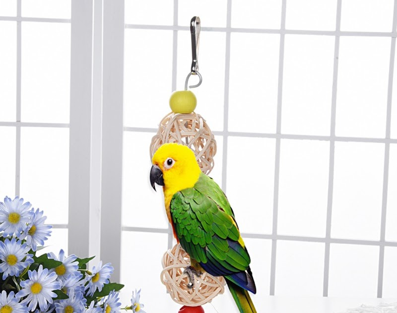Robe Hooks New Parrot Birds Climbing Net Jungle Rope Animals Toy Swing Ladder Chew Discounts Sale Home Improvement