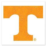 Tennessee Volunteers Temporary Glitter Tattoo - 2 Pack