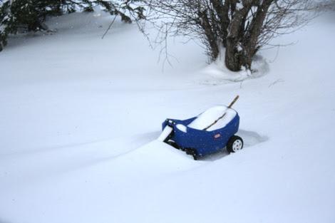 snow, shmow