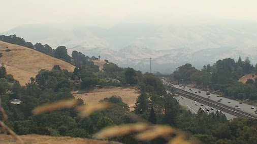 The Mendocino Complex Fires are creating bad air quality around the Bay Area. The particulates in the...