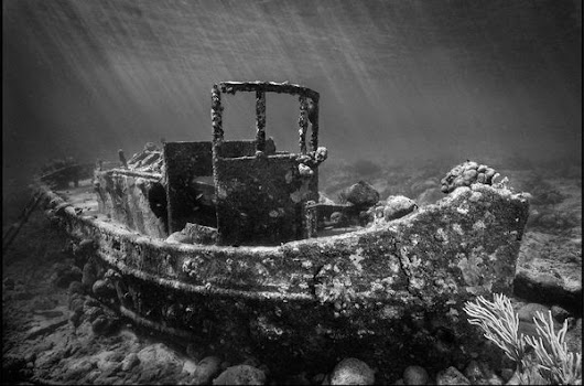 How To Edit Wreck Diving Photos in Adobe Lightroom