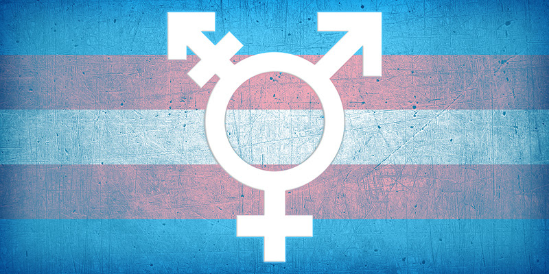 Image result for Trans awareness week 2016