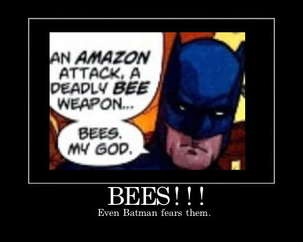 Amazons Attack! Again!