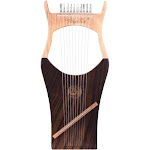 walter.t 10-string wooden lyre harp nylon strings rosewood topboard rubber wood backboard string instrument with carry bag wh01