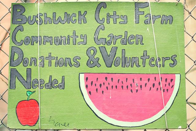 Bushwick Community Garden