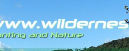 Wilderness Calls | Hunting Excursions and Supplies