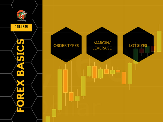 FOREX Basics: Order Types, Margin, Leverage, Lot Size | COLIBRI TRADER