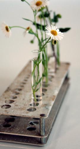 ds3My new vase(s)