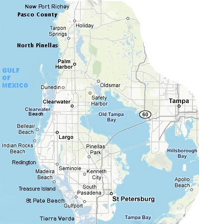 Waterfront Florida Homes - Florida Beach Homes For Sale - Florida Gulf Front Homes