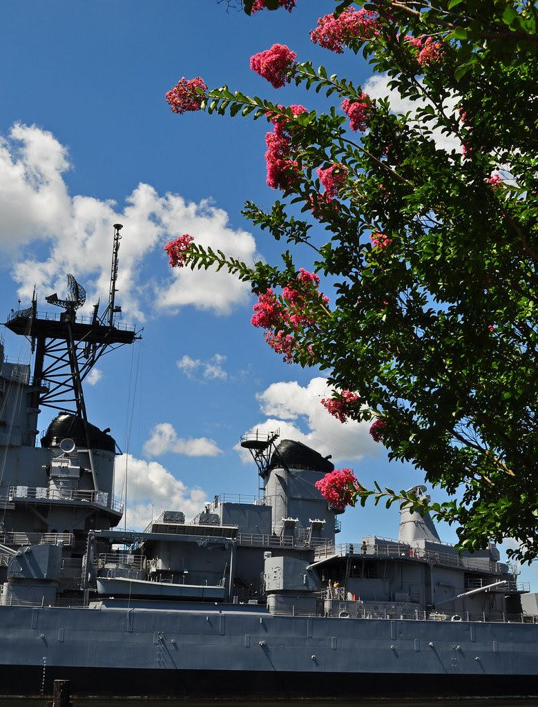 Battleship Gray and Coral Pink