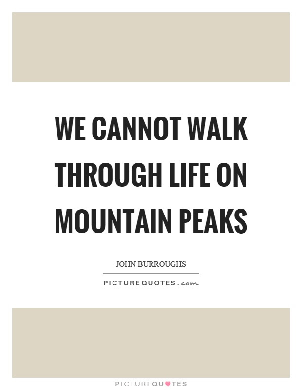 We Cannot Walk Through Life On Mountain Peaks Picture Quotes