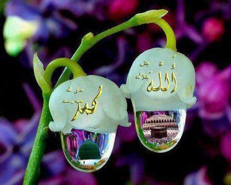 embun pagi oleh ustadz abu yahya badrusalam lc bunga desa