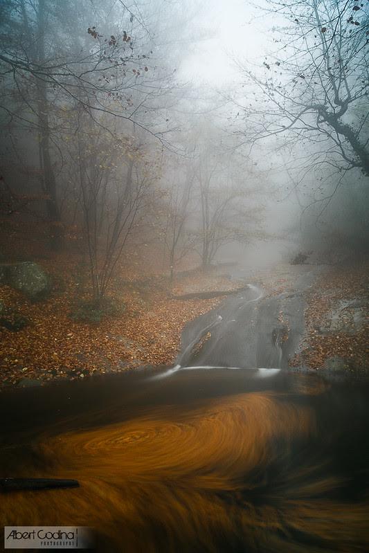 Remolí Misterios | Mysterous Whirlpool