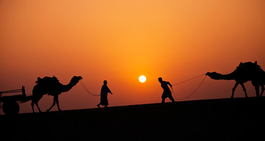 Rajasthan - Sunsets, Sand, Camel and Cameras! - Darter Photography
