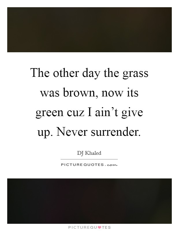 I Never Give Up Quotes Sayings I Never Give Up Picture Quotes