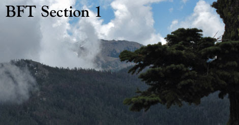 Section 1 - Bigfoot Trail