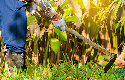 How to prevent skin problems due to gardening | American Academy of Dermatology