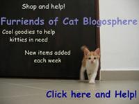 Furriends of Cat Blogosphere