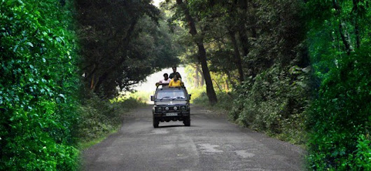 Jaldapara Jeep Safari - ID Proof needed for all | North Bengal Tourism Blog