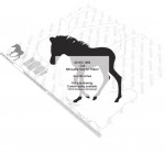 Colt Silhouette Yard Art Woodworking Pattern - fee plans from WoodworkersWorkshop® Online Store - horses,colt,esquestrian,yard art,painting wood crafts,scrollsawing patterns,drawings,plywood,plywoodworking plans,woodworkers projects,workshop blueprints