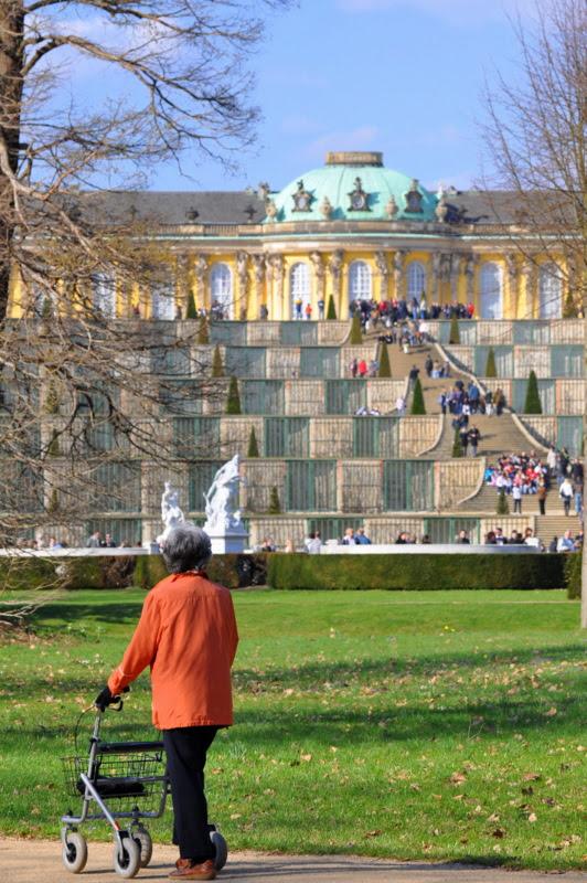 Weinbergterrassen- Sanssouci