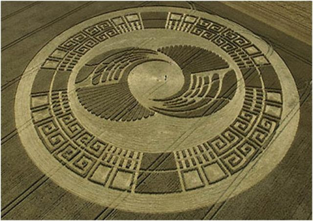 Crop circle  ----------------------------  Intricate!!!