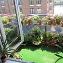Disfruta y aprende creando tu huerto urbano ecológico en 5 pasos