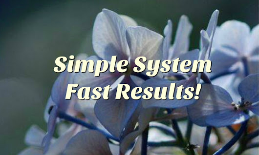Simple System Fast Results