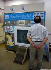 lavadora_perros