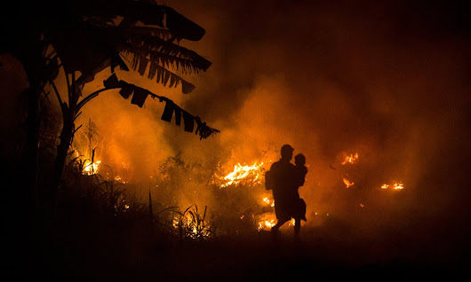 Indonesia is burning. So why is the world looking away? | George Monbiot | Comment is free | The Guardian