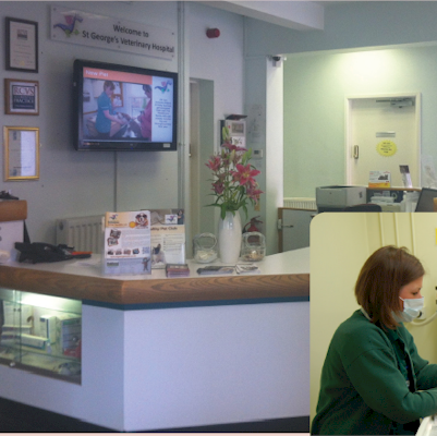 Repeat Signage digital signage software for healthcare