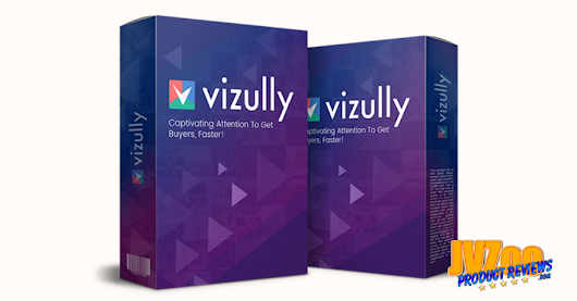 Vizully Review and Bonuses
