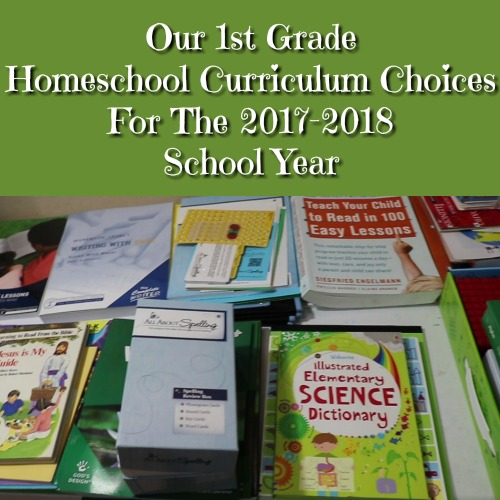 Our 1st Grade Homeschool Curriculum Choices For The 2017-2018 School Year - Mommy Share Space