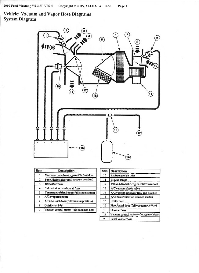 1999 Ford Mustang Fuel System Diagram Full Hd Version System Diagram Timeline Origineworkingaussies Fr