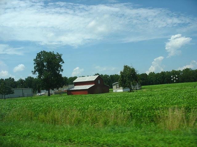 my world a barn IMG_2386